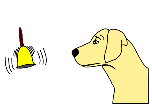 Principles of Classical Conditioning - Psychestudy