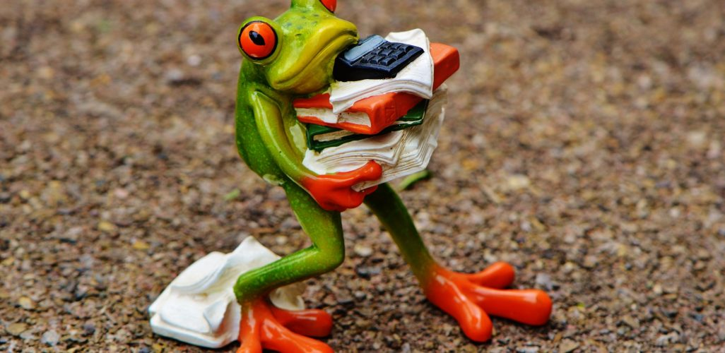 frog carrying books and clothes