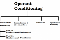 diagram of concepts of operant conditioning